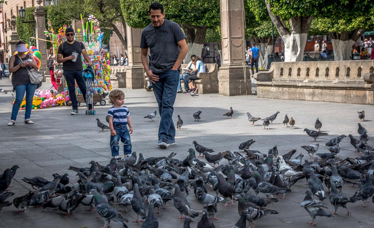 Photowalk, Centro, Morelia, Mexico